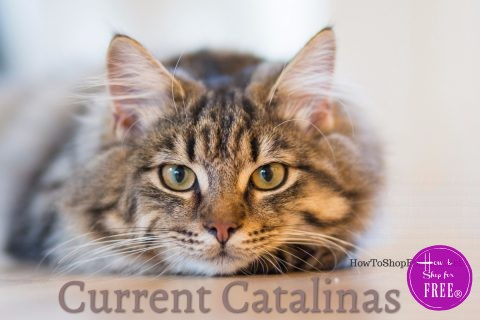 Current Catalinas (CATS)