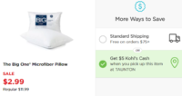 $2.46 Moneymaker On The Big One Pillow at Kohl's after Kohl's Cash