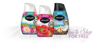 Renuzit Solid Air Freshener ONLY 75¢ at Shaw's 11/10 ~ 11/16!