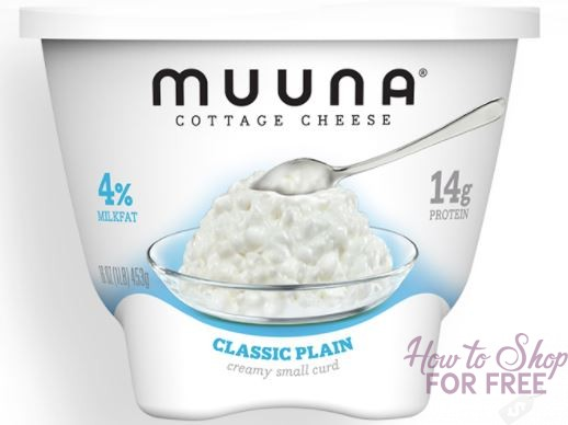 Muuna 16oz Cottage Cheese ONLY 88¢ at Shaw's 11/10 ~ 11/16!