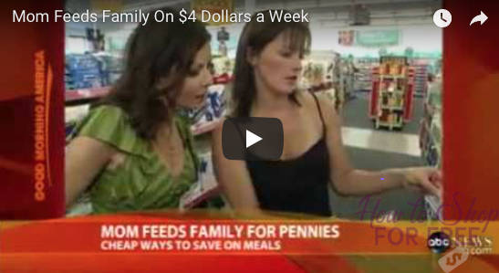 Mom Feed Family for Pennies, Good Morning America Video
