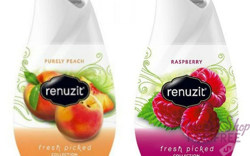 Renuzit Solid Air Fresheners ONLY 75¢ at Shaw's 12/08 ~ 12/14!