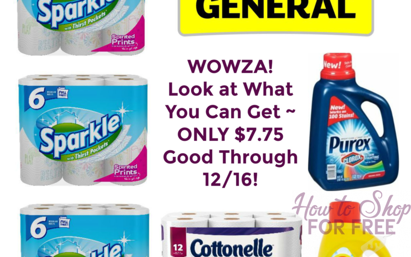 WOWZA! Look at What You Can Get for ONLY $7.75 at Dollar General ~ Good Through 12/16!