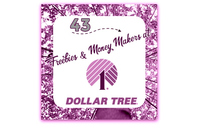 $43 in FREEBIES from Dollar Tree~ Shop for FREE with Coupons!