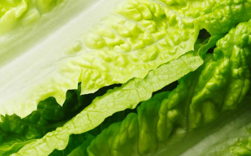 You May Want to Avoid Romaine Lettuce… E. Coli Warnings!