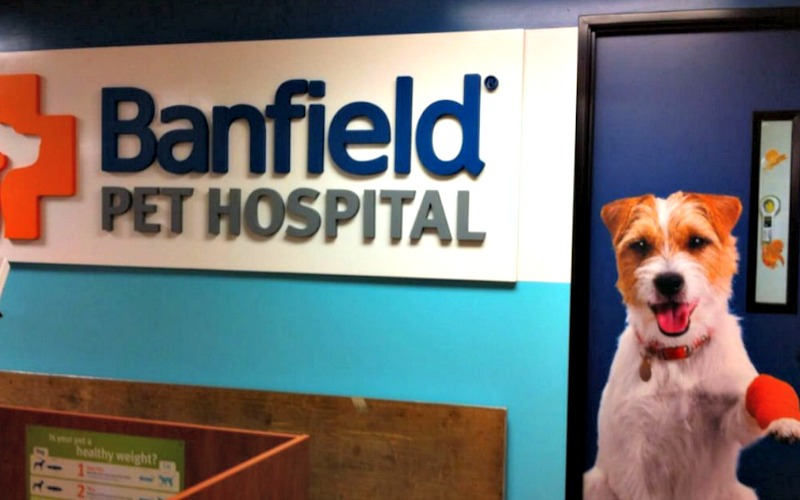 FREE Banfield Pet Hospital Office Visit & Consult!
