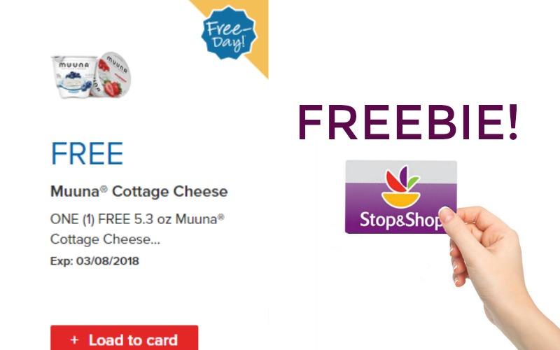 Free Muuna Cottage Cheese at  Stop & Shop
