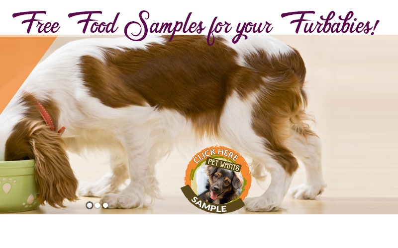 "FREE Sample of ""Pet Wants"" Dog/Cat Food!!"