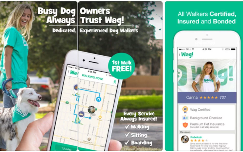 FREE Dog Walk with the Wag! App (Up to $30 Value!!)