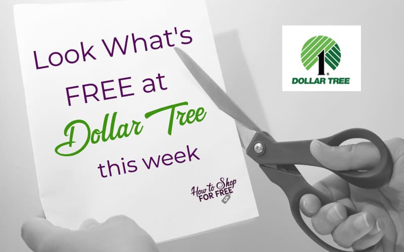 Grab 25 FREE Products from Dollar Tree!