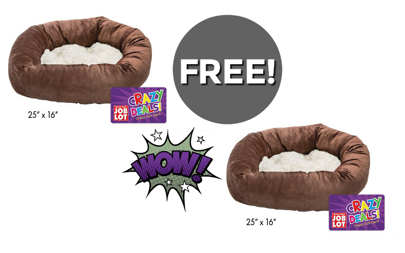 Memory Foam Pet Bed for NOTHING~ 3 Days Only!