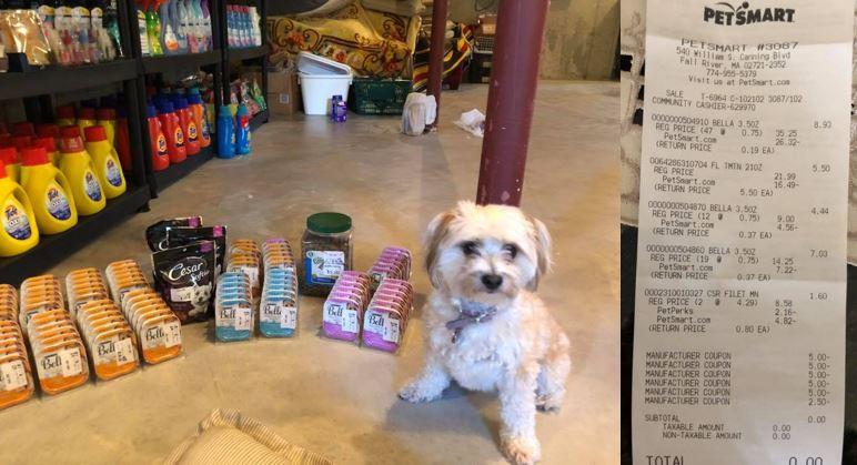 MONEY MAKER on Bella Wet Dog Food at PetSmart! | How to Shop For