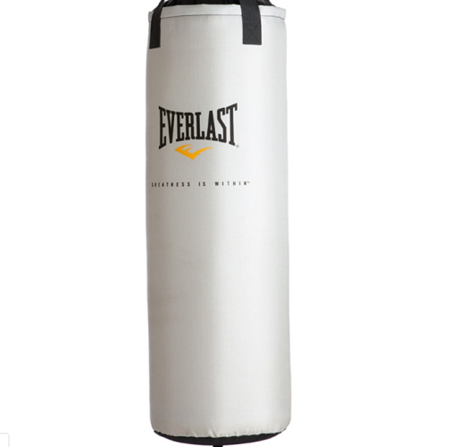 F R E E Everlast 60 lb. Heavy Bag Kit
